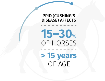 PPID (Cushing's Disease) affects 15–30% of horses > 15 years of age
